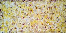 Boris Pecigoš, Sunčana polja, akril na platnu, 50 x 100 cm