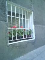 Štef - prozori i pokušaj 795