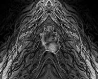 Svebor Vidmar, ''Unutrašnjost'', digitalna grafika na papiru, 61,8x76 cm, 2014