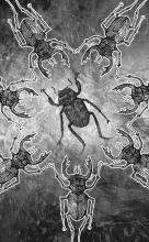 Svebor Vidmar, ''Kolo'', digitalna grafika na papiru, 82,4x52 cm, 2014