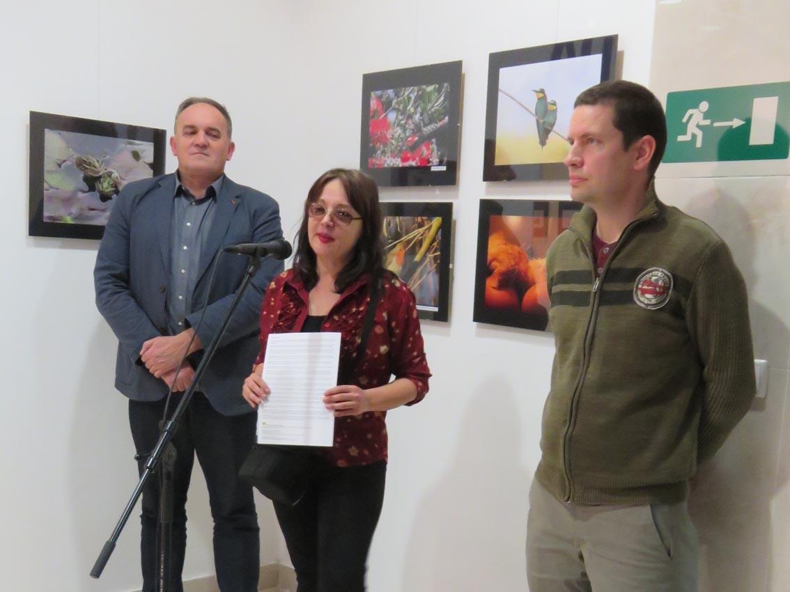 Željko Šturlić, Krešimira Gojanović, Svebor Vidmar, Fotogalerija Dubrava