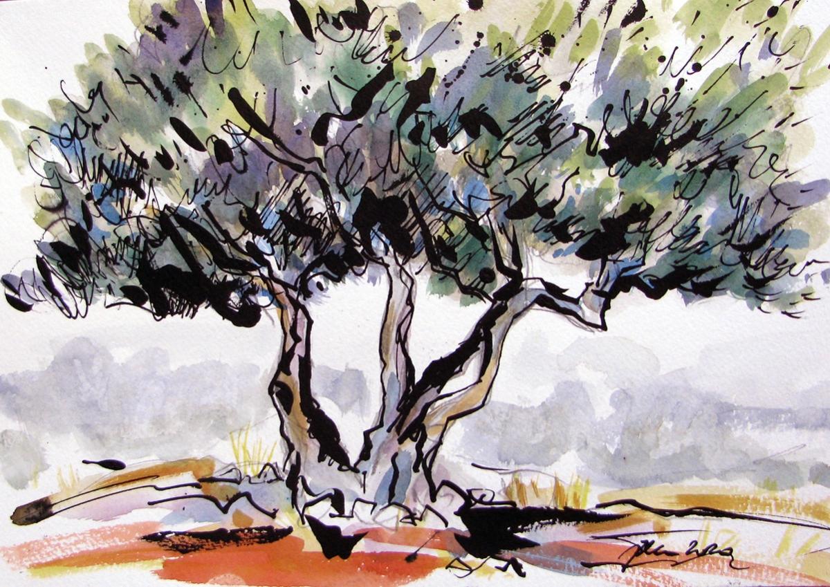 Jelena Martinović, ''Masline 1'', akvarelirani crtež tušem na papiru, 21x30 cm
