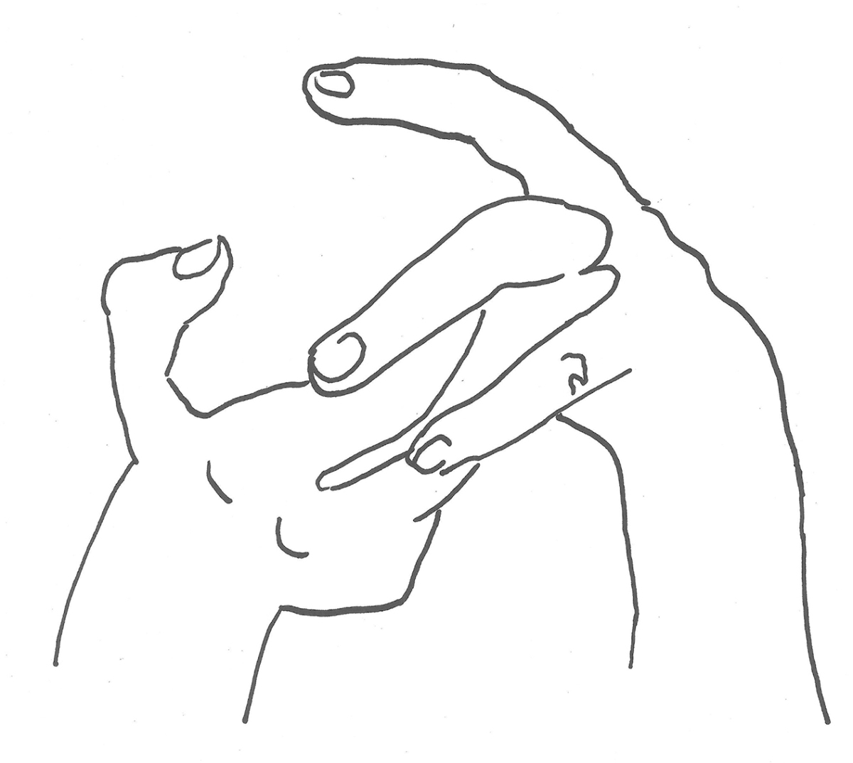 Marina Popović, ''Ruke 2'', flomaster na papiru, 20,5x23 cm