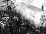 Veronika Stehr, ''Sanjar u polju I'', digitalni crtež, 29,7x42 cm