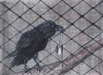 """Jasenka Smrekar, """"Rekao je što nije smio"""", ugljen i pastel u olovci, 29x40 cm"""